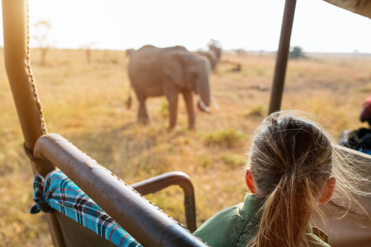 A girl on safari looks out at an elephant on the savanna.