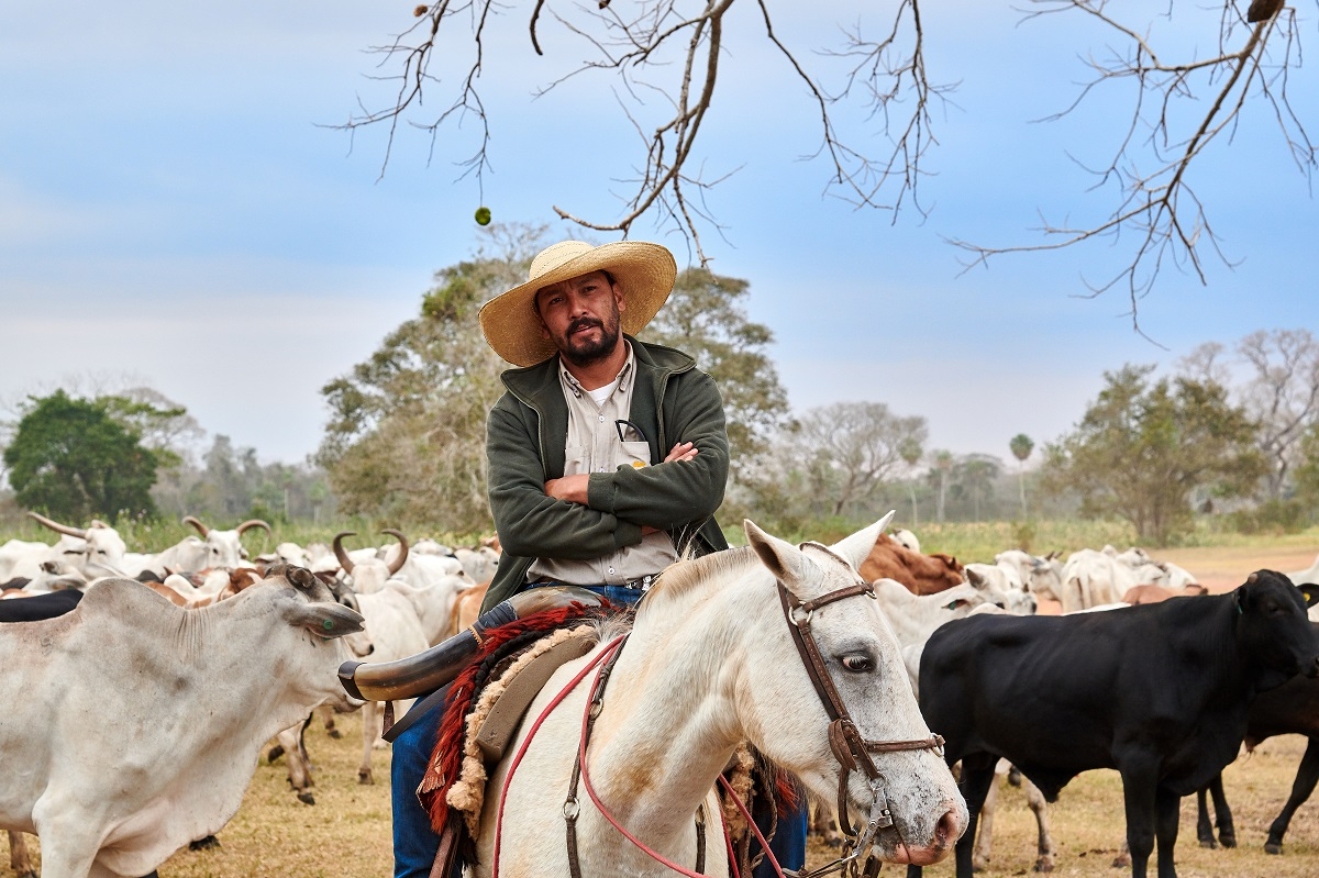 Cowboy and Herd, Caiman Ecological Refuge, Baiazinha Lodge
