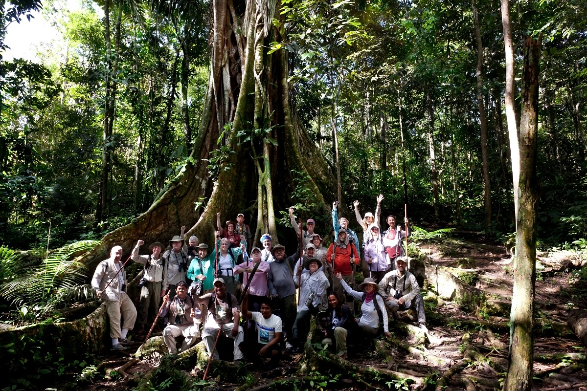 Nat Hab travelers pose by a massive tree in the Amazon rain forest.