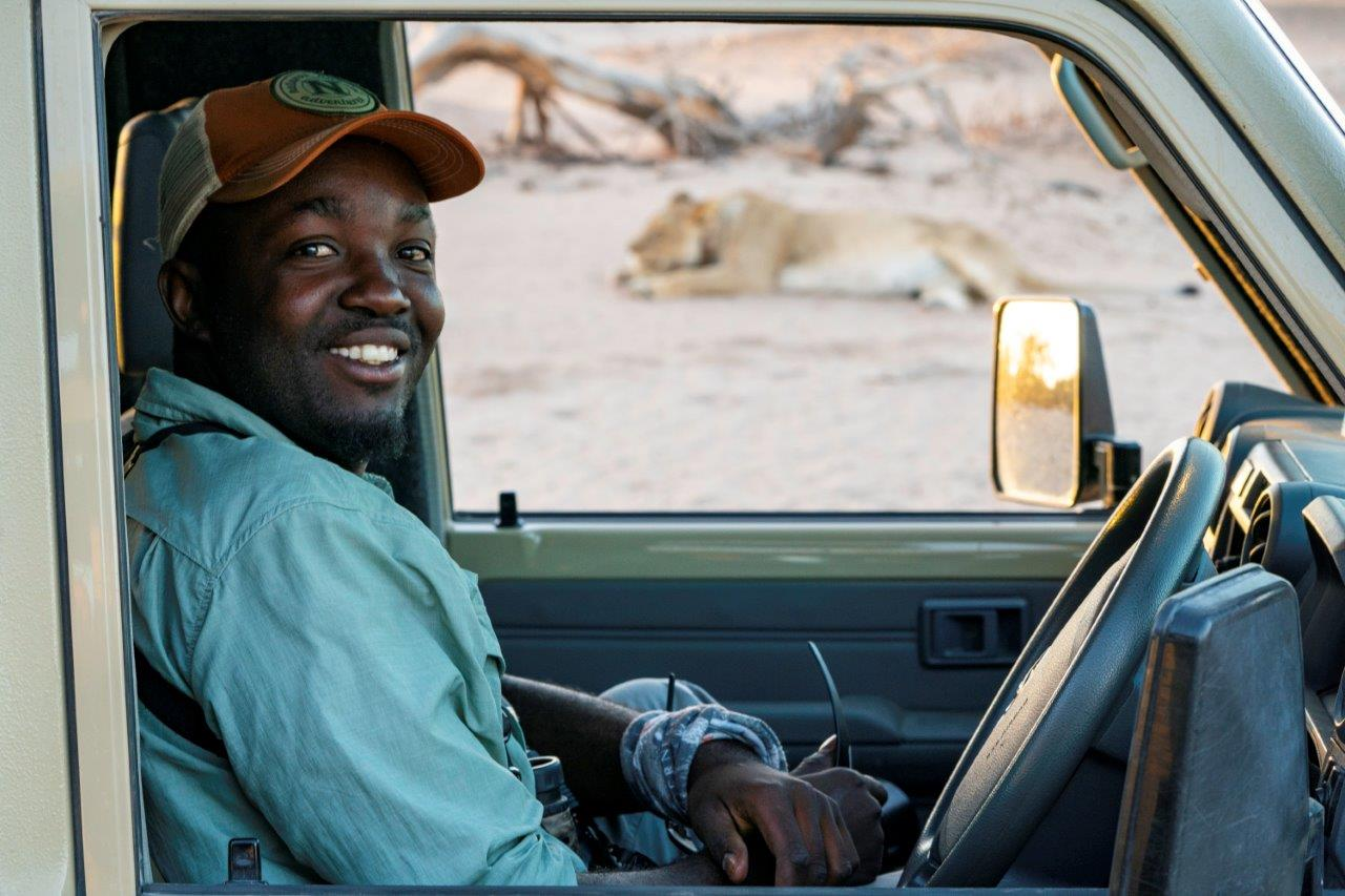 Safari guide with a lion in Namibia