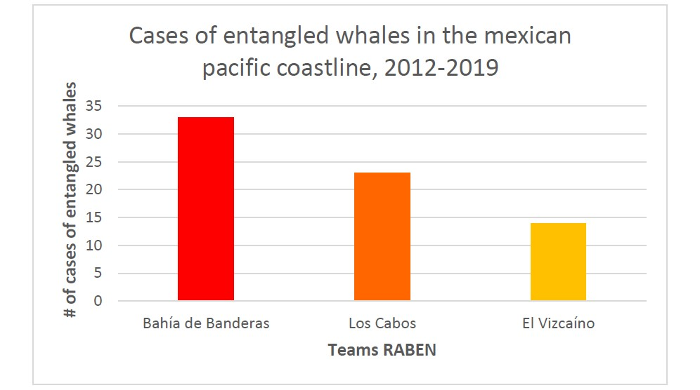 Graph depicting number of whale disentanglement cases in Mexico.