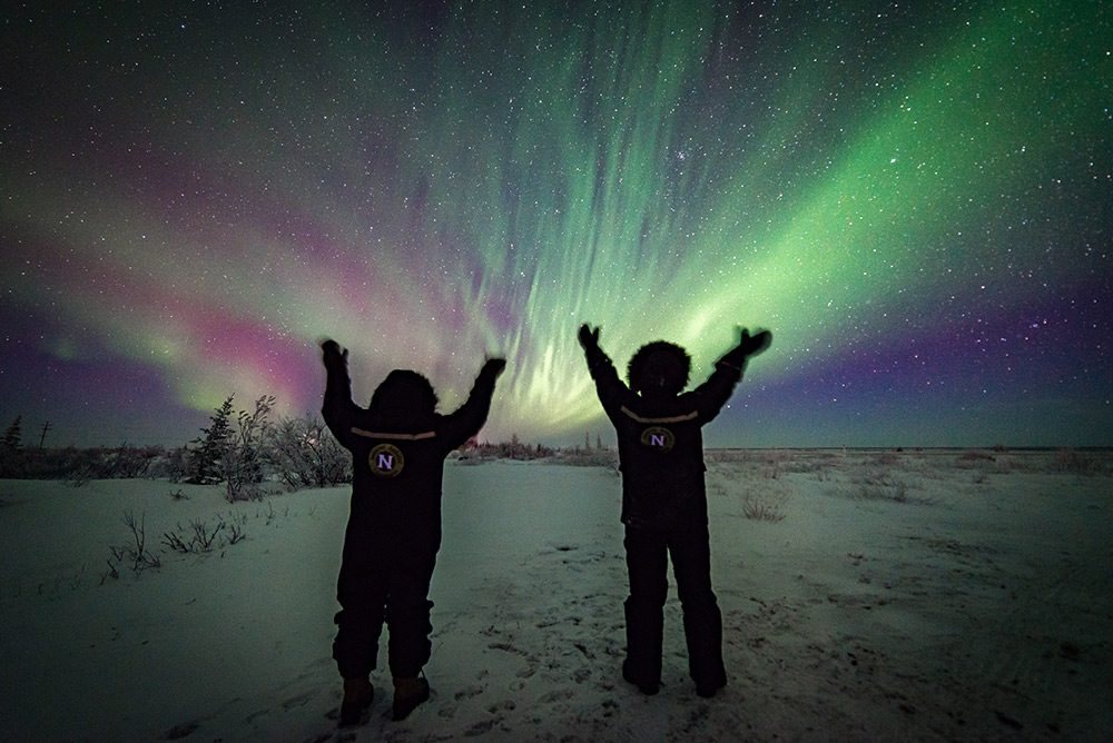 Nat Hab travelers under the northern lights.