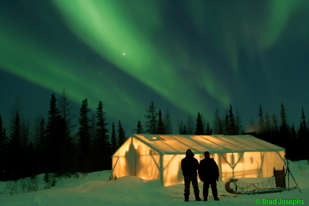 Nat Hab travelers under the northern lights in Churchill.