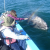 Gray Whales and Family Bonds in Baja