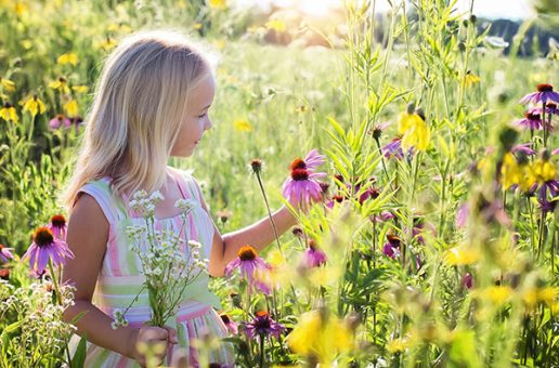 Connection with Nature as a Child Means a Healthier Adult
