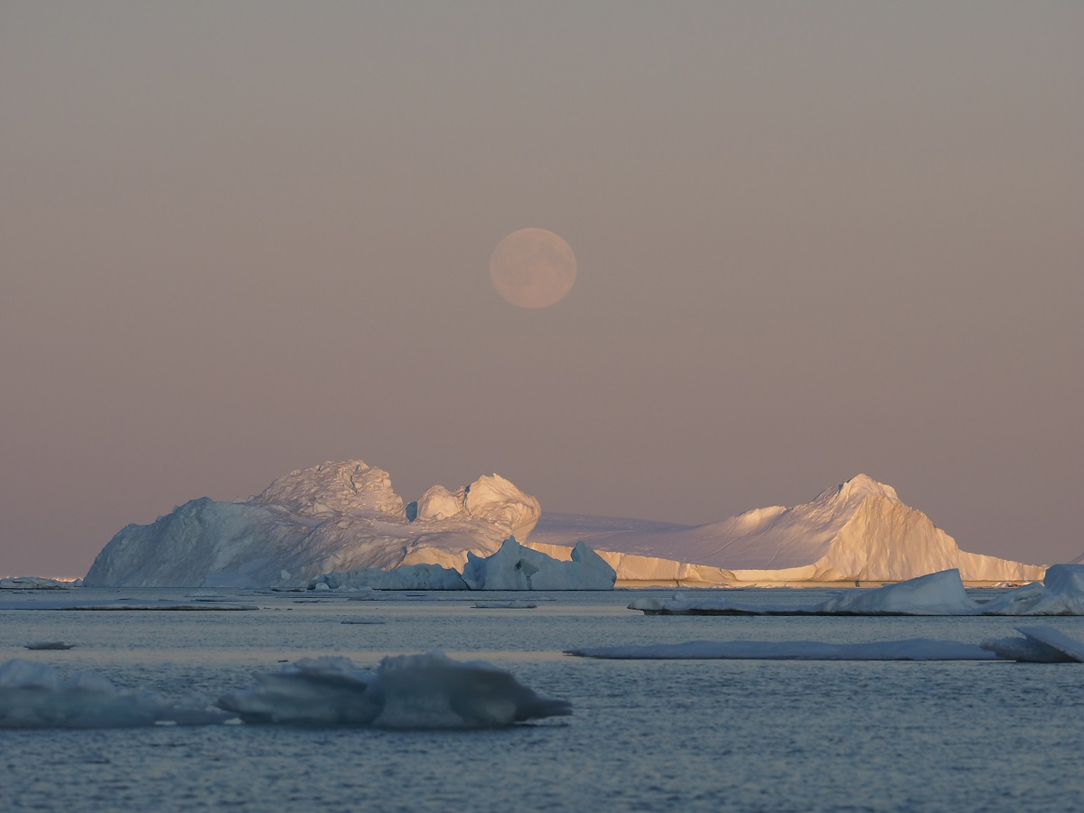 The moon rises over icebergs in Greenland.