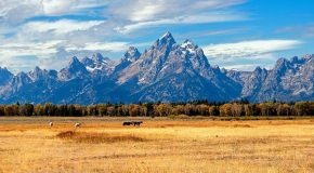 Video: Grand Teton National Park Getaway