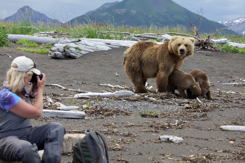 A photographer and grizzlies in Katmai