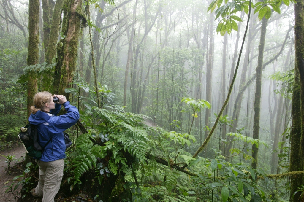 A Nat Hab traveler in the Costa Rican jungle.