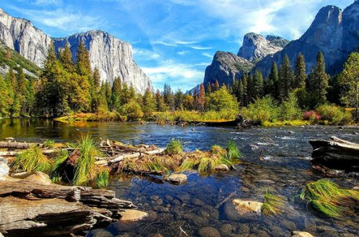 Wildfires Restore Yosemite and a Video View of the Park