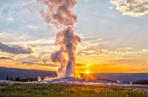 Yellowstone: A Problem for a Born Naturalist | A Glimpse Into the Life of a Yellowstone Guide
